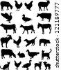 farm animals collection vector - stock vector
