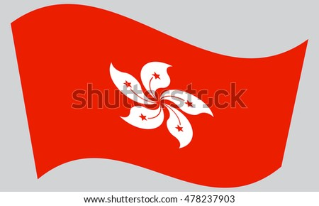 Flag of Hong Kong waving on gray background. The Hong Kong is special administrative region of the Peoples Republic of China.