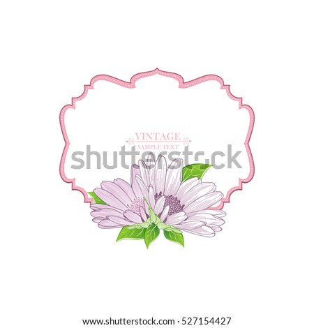 Floral frame with flower chamomile. Element for design. Vector illustration.