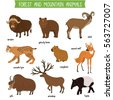forest and mountain animals set ...