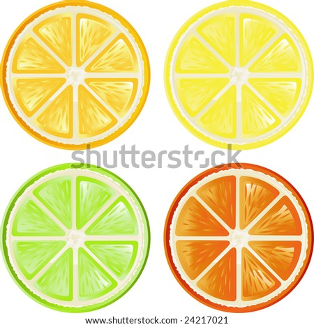 Four citrus, isolated on white