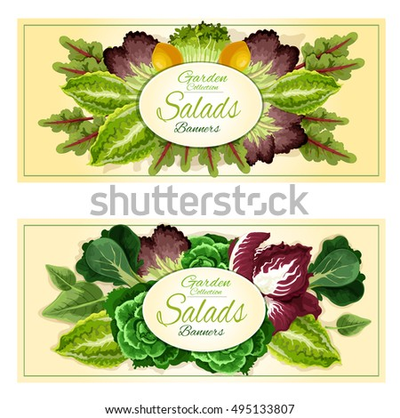 Fresh Organic Leaf Vegetables And Salad Greens Banners Set With Cabbage Lettuce Spinach