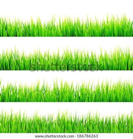 Fresh spring green grass isolated on white background. And also includes EPS 10 vector