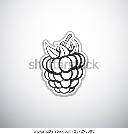 Raspberry Icon Food Fruits Outlined Silhouette Stock ...