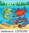 Freshwater fish theme image 3 - vector illustration. - stock vector