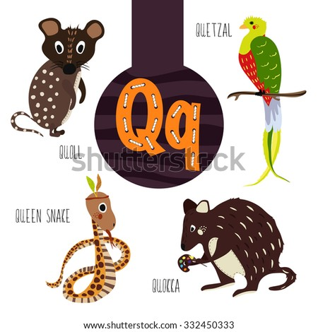 animals that start with the letter q s vocabulary set squash squirrel stock vector 20191