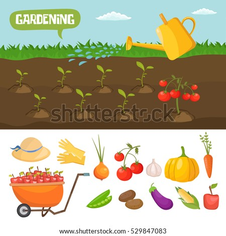 Garden colorful designs elements vector farm stock vector for Different tools and equipment in horticulture