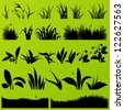 Grass and plants detailed silhouettes illustration collection background vector - stock vector