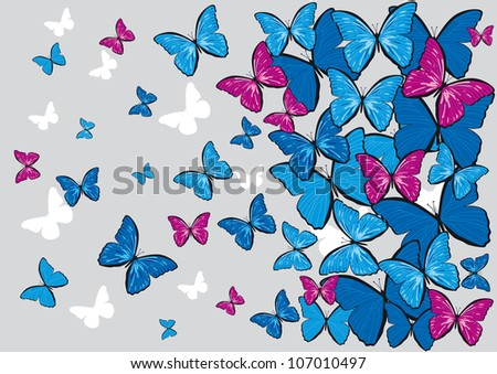 gray vector background with colorful butterflies for design