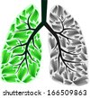 Green and gray human lungs. eps10 - stock vector