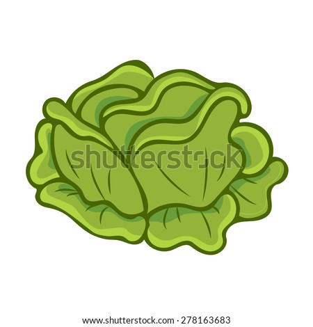 Coloring Book Chinese Cabbage Stock Vector 286406306 ...