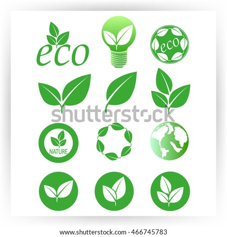 Green eco collection. Vector illustration. Leafs icon