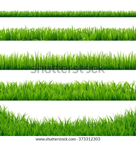 Green Grass Big Set, Vector Illustration