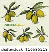 Green olives vector - stock photo