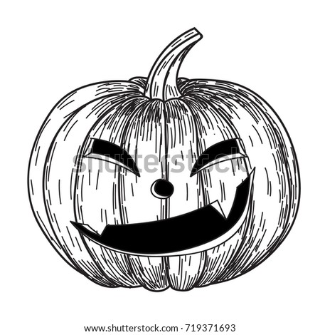 Vector hand drawn set sketch pumpkin stock vector for Funny pumpkin drawings