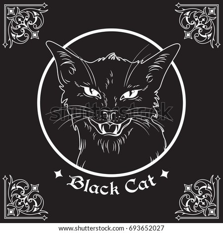 "the gothic evil elements in the black cat Pypłacz joanna, ""gothic"" elements in seneca's tragedies in the present article i   this enemy is the eponymous black cat, an animal which in the sick mind of   he is indeed an evil demon who infects atreus's palace with himself because."
