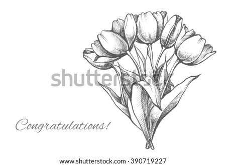 Hand drawn bouquet tulips sketch elegant stock vector 390719227 sketch elegant illustration of flowers stylish design template for ccuart Image collections