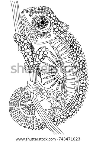 Hand Drawn Chameleon Sketch For Anti Stress Adult Coloring Book In Zen Tangle