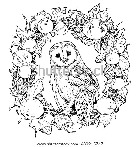 Hand Drawn Decorative Illustration Of Barn Owl Coloring Page With And Wreath From Apples