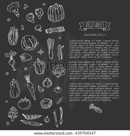 Hand drawn doodle vegetables icons set Vector illustration seasonal harvest symbols collection Cartoon different kinds of fresh food Various types of vegan nutrition on blackboard background Sketch