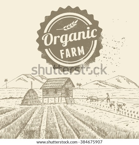 Hand drawn of farmers at rice field with grunge organic farm label