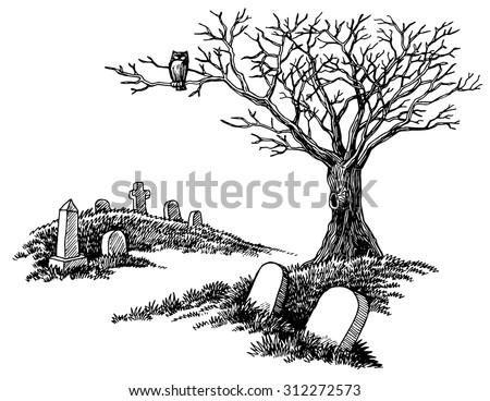 Park Sketch Wooden Bench Under Tree Stock Vector 521238064