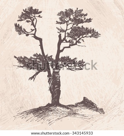 Hand drawn tree larch. Vector Illustration on brown abstract background