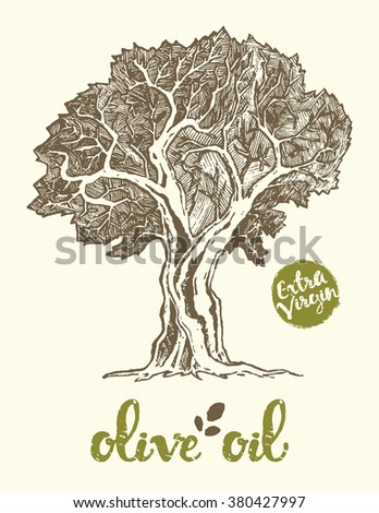 Hand drawn vector illustration of olive tree