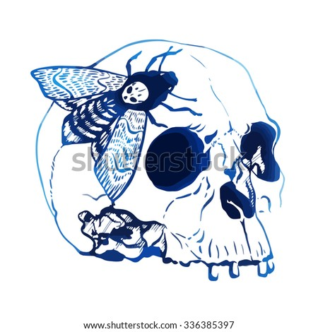Hand drawn vector skull with butterfly