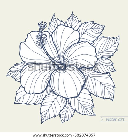 Hawaii Hibiscus Flower Leaves Isolated Aloha Vector Floral Artwork Coloring Book Page