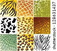 Highly detailed animal skin vector pack - stock vector