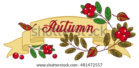 "Horizontal banner with cranberries and artistic written word ""Autumn"". Vector clip art."
