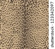 hot and sophisticated, leopard animal seamless skin - vector - stock photo