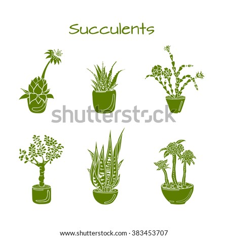 Illustration of most popular succulents. Christmas Cactus. Aloe vera. Hens-and-Chicks plant. Jade Plant. Crown of Thorns. Snake plant. Isolated.