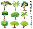 Illustration of various trees on a white background - stock
