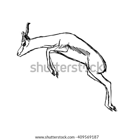 how to draw a horse jumping from the front