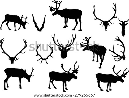 Depositphotos Stock Illustration Vector Moose Head additionally  furthermore Depositphotos Stock Illustration Silhouette Deer With Great Antler besides Stock Vector Illustration With Deer Silhouettes Isolated On White Background also  on antler silloette