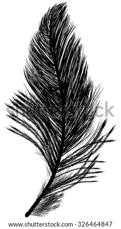 illustration with single feather silhouette isolated on white background