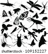 insects animals - stock vector
