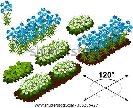 Isometric flowers in vector