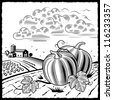 Landscape with pumpkins black and white. Vector - stock photo