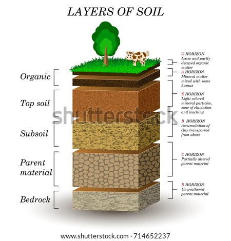 Education chart biology layers soili diagram stock vector for Meaning of soil formation