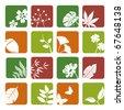 Leaf icons set. Illustration vector. - stock photo