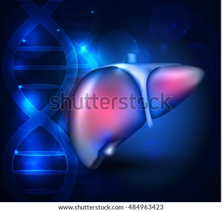 liver anatomy abstract blue scientific background stock. Black Bedroom Furniture Sets. Home Design Ideas