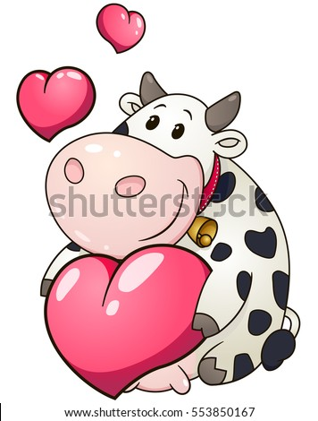 Lovely chubby cow holding heart. Valentine day holiday vector illustration.