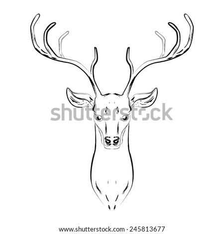 Male deer with horns, head hand drawn sketch. Vector illustration