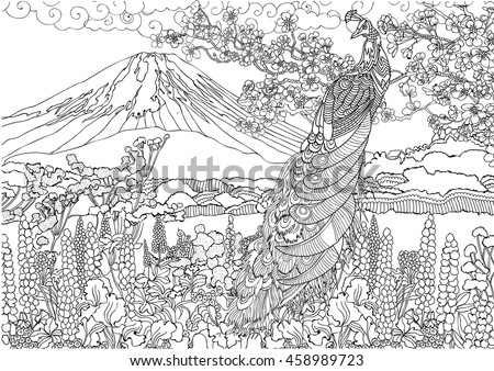 coloring pages india indian woman stock vector 422483587 shutterstock. Black Bedroom Furniture Sets. Home Design Ideas