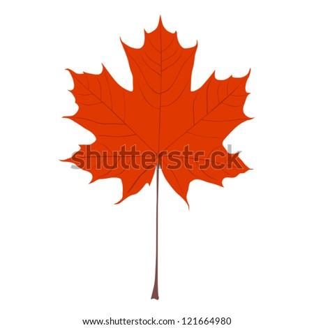 Stock vector orange maple leaf vector illustration 121664980