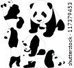 Panda babies vector silhouettes. Layered. Fully editable. - stock vector