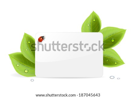 Paper card, ladybug and foliage with water drops, illustration.
